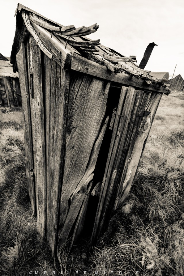 Outhouse.  Copyright Merilee Mitchell